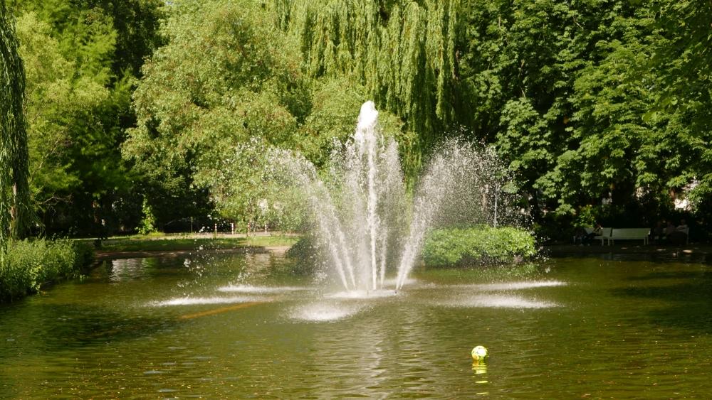 2019: Stadtpark Bad Godesberg (Foto: Manfred Weiler)
